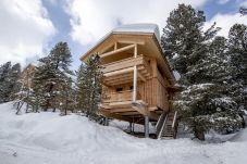 Außenansicht Chalet Turrach Winter