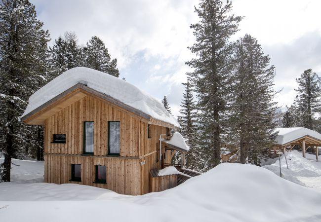 freistehendes Haus in Turrach - Haus 42 - Haus Bastion