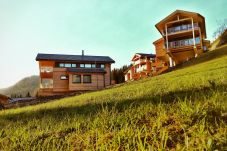 Alm Chalets Dreamchalet Sommer