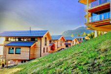 Sommer Reiteralm Chalets Holzhäuser