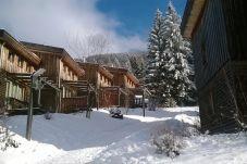 Winterurlaub Ferienhaus Steiermark Hohentauern